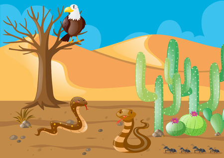 Snakes and eagle in the desert illustration