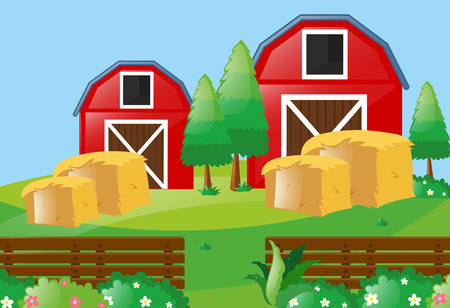 Farm scene with two barns in farm illustration