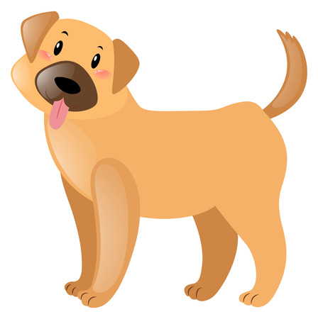 little dog: Little dog with brown fur illustration