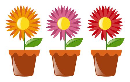 flower pots: Flower pots with three flowers illustration Illustration