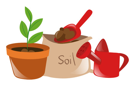 potted plant: Potted plant and other equipment illustration Illustration