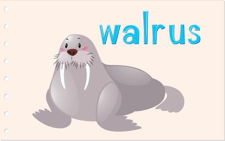 walrus: Flashcard animal with walrus illustration