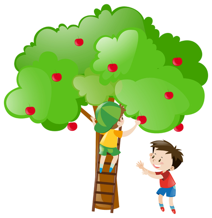 picking: Two boys picking apples from tree illustration