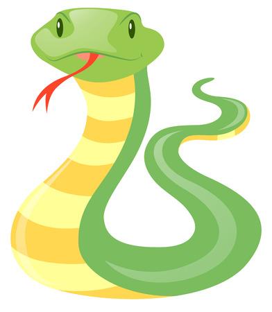 crawling creature: Green snake on white background illustration