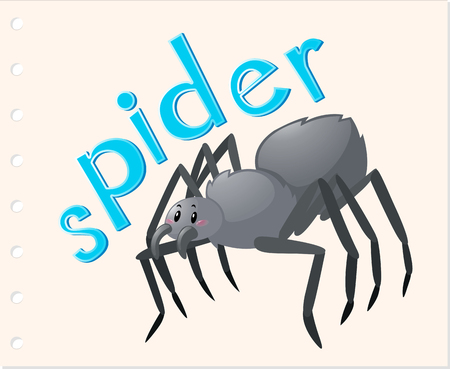 Animal word card with spider illustration