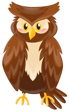 Cute owl with brown feather illustration