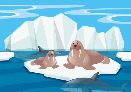 north pole: Walrus and shark in north pole illustration