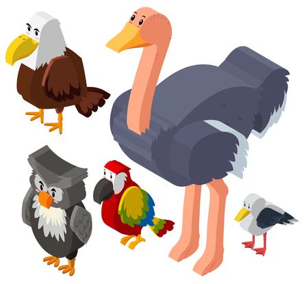 macaw: 3D design for different types of birds illustration Illustration