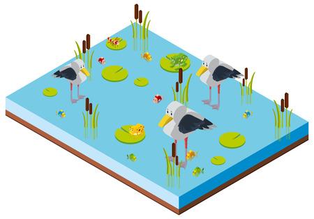 Pond scene with birds in 3D design illustration