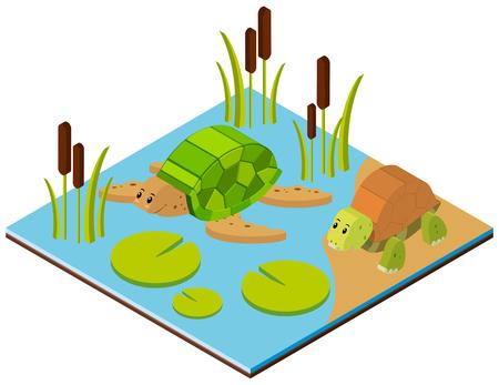 Vijverscène met twee schildpadden in 3D-ontwerp illustratie