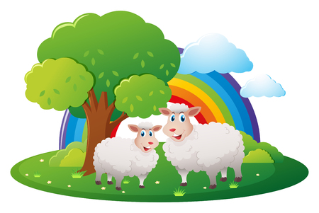 Two sheeps on the farm illustration