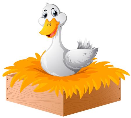 White duck in the nest illustration