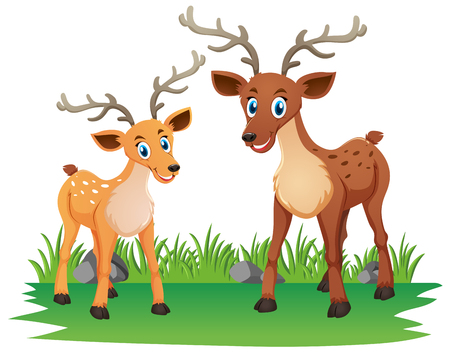 Mother deer and little fawn in the park illustration