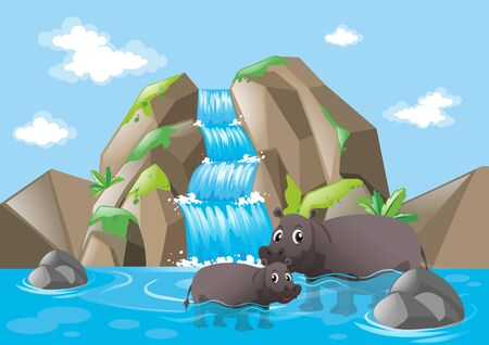 Two hippopotamuses in the waterfall illustration