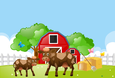 Two cows on the farmyard illustration Illustration