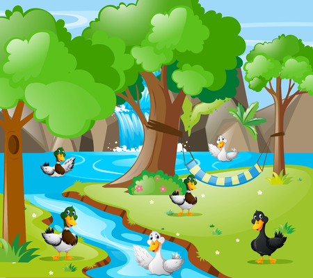 Many ducks in the forest illustration Illustration