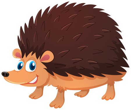 Cute hedgehog on white background illustration
