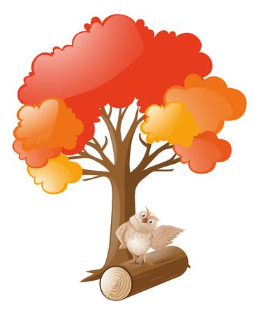 tree log: Owl standing on log under tree illustration Illustration