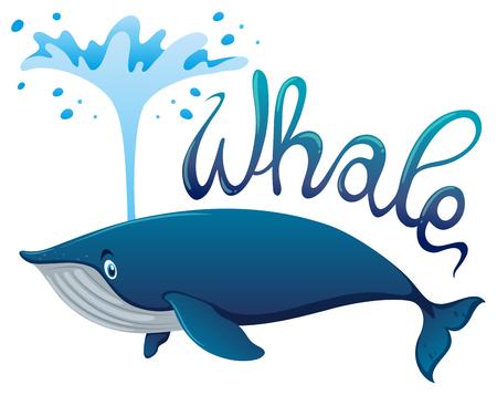 Wal spritzt Wasser mit Wort Illustration Standard-Bild - 80309878
