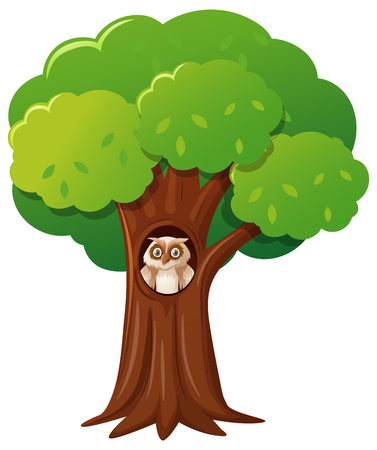 Owl in the hollow tree illustration
