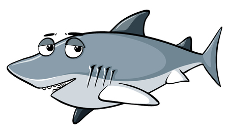 Gray shark on white background illustration