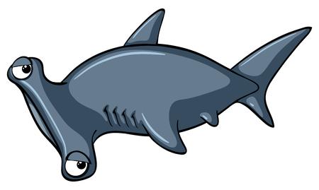 Shark on white background illustration