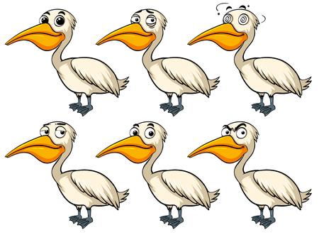 Pelican bird with different emotions illustration Illustration