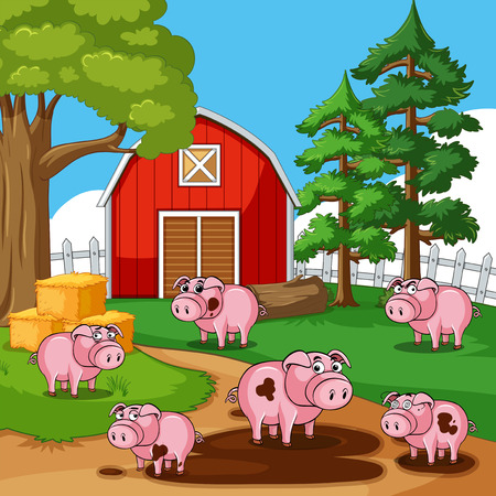 Pigs in muddy puddles on the farm illustration