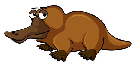 Platypus with sleepy eyes illustration Illustration