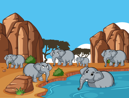 Wild elephants living by the pond illustration