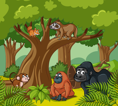 sloth: Scene with wild animals in the forest illustration Illustration