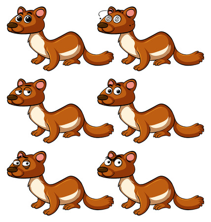 Beaver with different facial expressions illustration