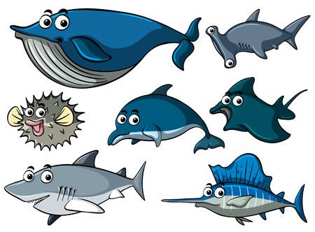 Different types of sharks illustration Illustration