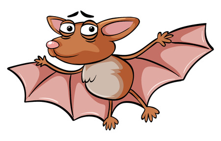 Bat with sad face illustration Illustration