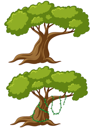 Two big trees with vine illustration