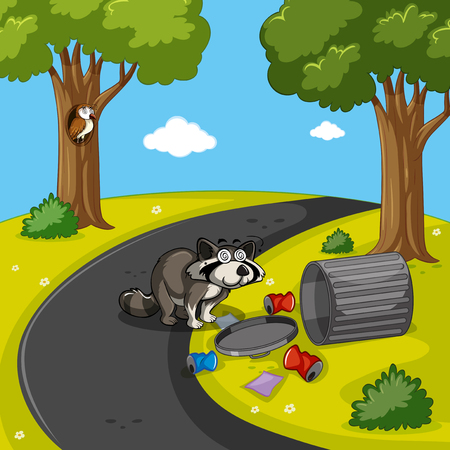 raccoon: Raccoon searching trash in park illustration