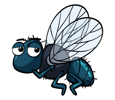 Sad housefly on white background illustration Illustration