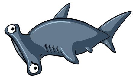 Hammerhead shark on white background illustration Illustration