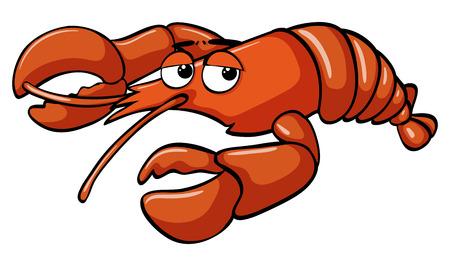 Red lobster on white background illustration