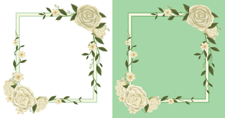 Two frames with white roses on border illustration