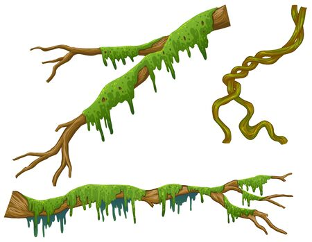 Wooden sticks with green moss illustration