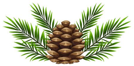 Pinecone con foglie di pino su sfondo bianco illustrazione Archivio Fotografico - 87744861