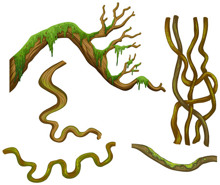 wooden stick: Different shapes of branches illustration