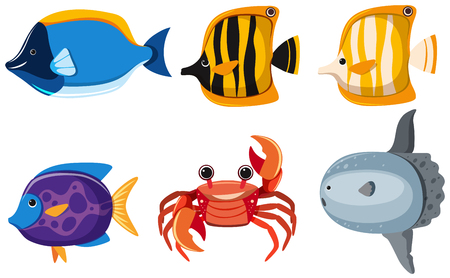 Set of different kinds of cute animals in the sea illustration