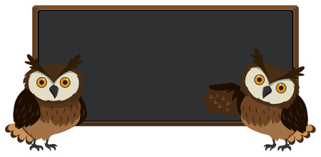 Blackboard with two owls on each sides illustration