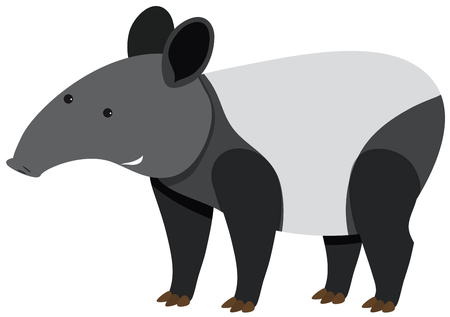 Cute tapir standing on white background illustration.