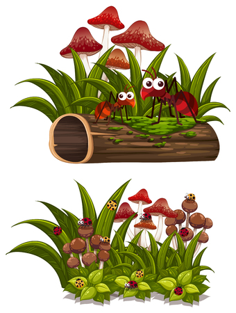 Mushroom and bugs on the log, vector illustration.