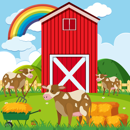 Three cows and red barn in the farmyard illustration.