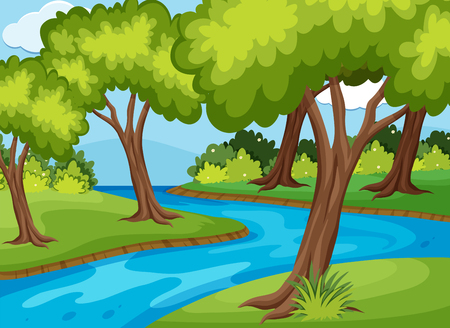 Forrest scene with river run through illustration