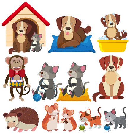 Different types of pets on white background illustration